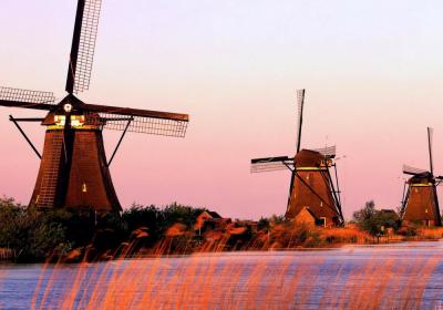 aprire impresa in olanda